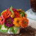zinnia-and-marigolds-with-coleus-foliage-4000