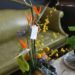 tropical-design-with-birds-of-paradise-oncidium-orchid-anthurium-and-protea-15000