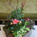 box-garden-red-birch-branches-with-african-violet-variegated-pothos-and-peach-begonia-