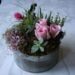 love-in-a-tin-tillandsia-air-plant-pink-splash-echevaria-roses-berries-5500