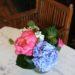 -peony-hydrangea-fragrant-stock-accent-foliage-4500