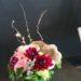 fan-mushroom-flowering-branches-gerber-daisy-dahlia-foliage-7500